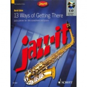 13 Ways of Getting There pro alt saxofon