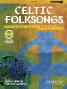 Celtic Folksongs for all ages pro housle